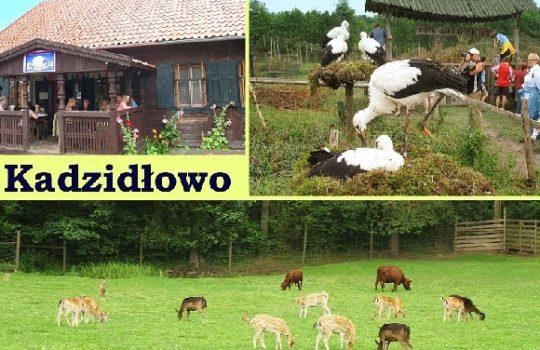 Park dzikich zwierząt w Kadzidłowie