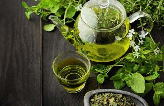 Zielona herbata – siła spokoju